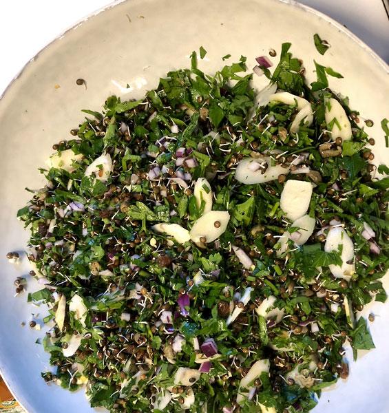 Linsen Sprossen als Salat